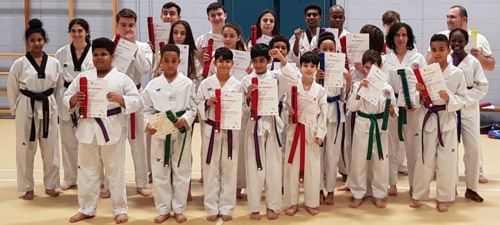 Adult Taekwondo (Age 15+) -