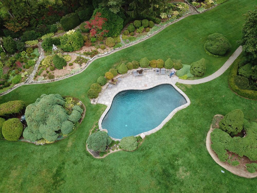 In-ground custom free form swimming pool