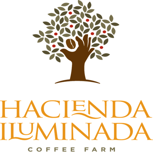 Hacienda Iluminada Coffee Farm