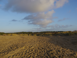 outdoor photography, formby beach