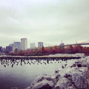 brooklyn bridge park in fall