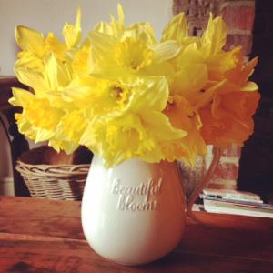 daffodils easter