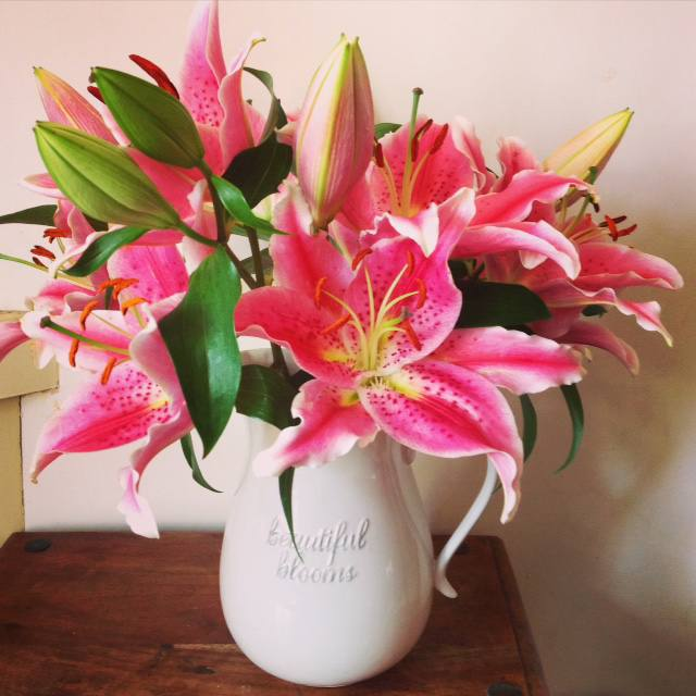 10 favourites this week lilies