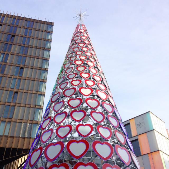 lierpool one christmas tree