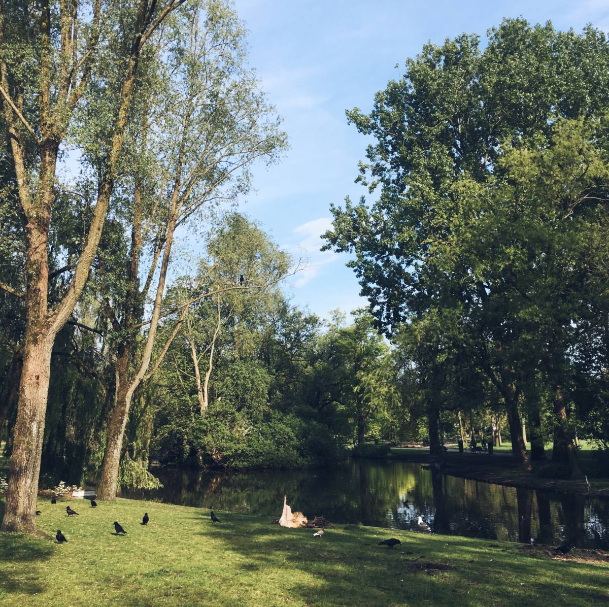 amsterdam city guide vondelpark
