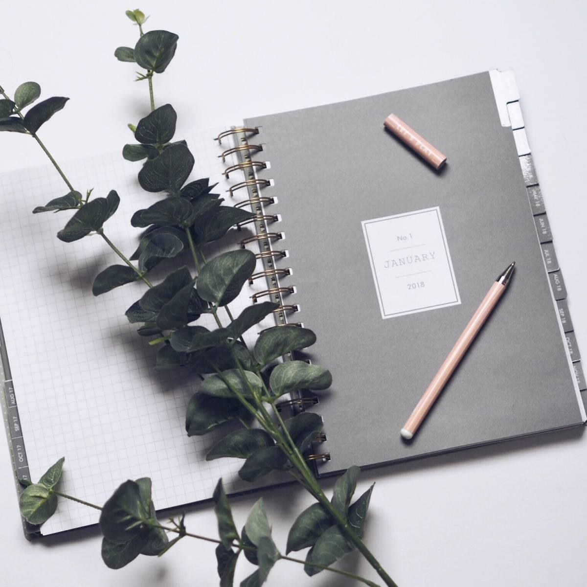 2018 blogging plans