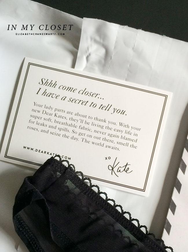 dear kate: revolutionary underwear / elizabethcraneswartz.com