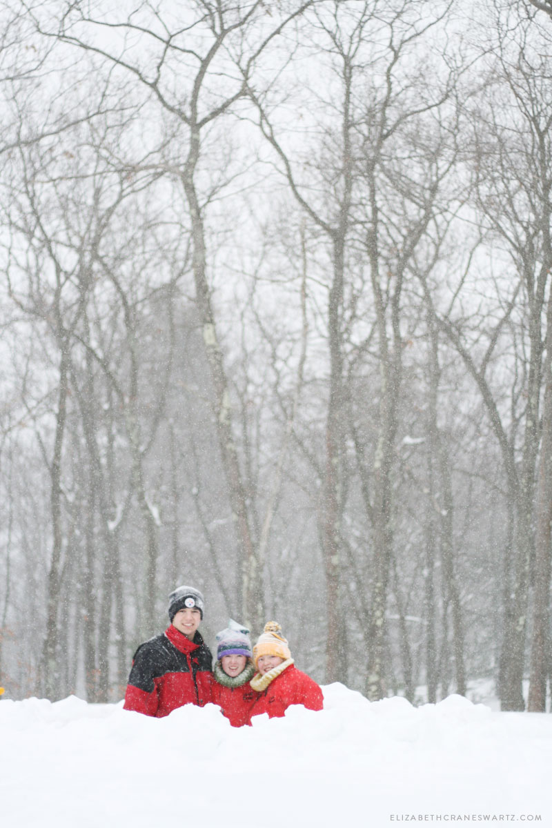 winter 2015 / elizabethcraneswartz.com