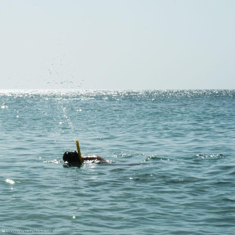 snorkeling in st kitts / elizabethcraneswartz.com