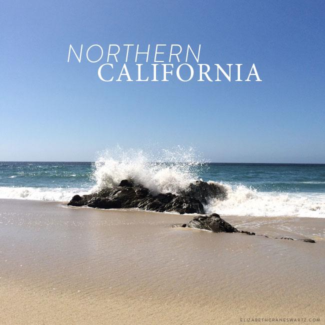 northern california / elizabethcraneswartz.com