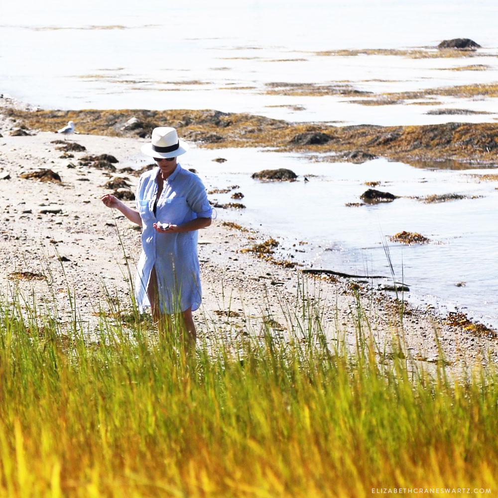shell seeking in peaks island / elizabethcraneswartz.com