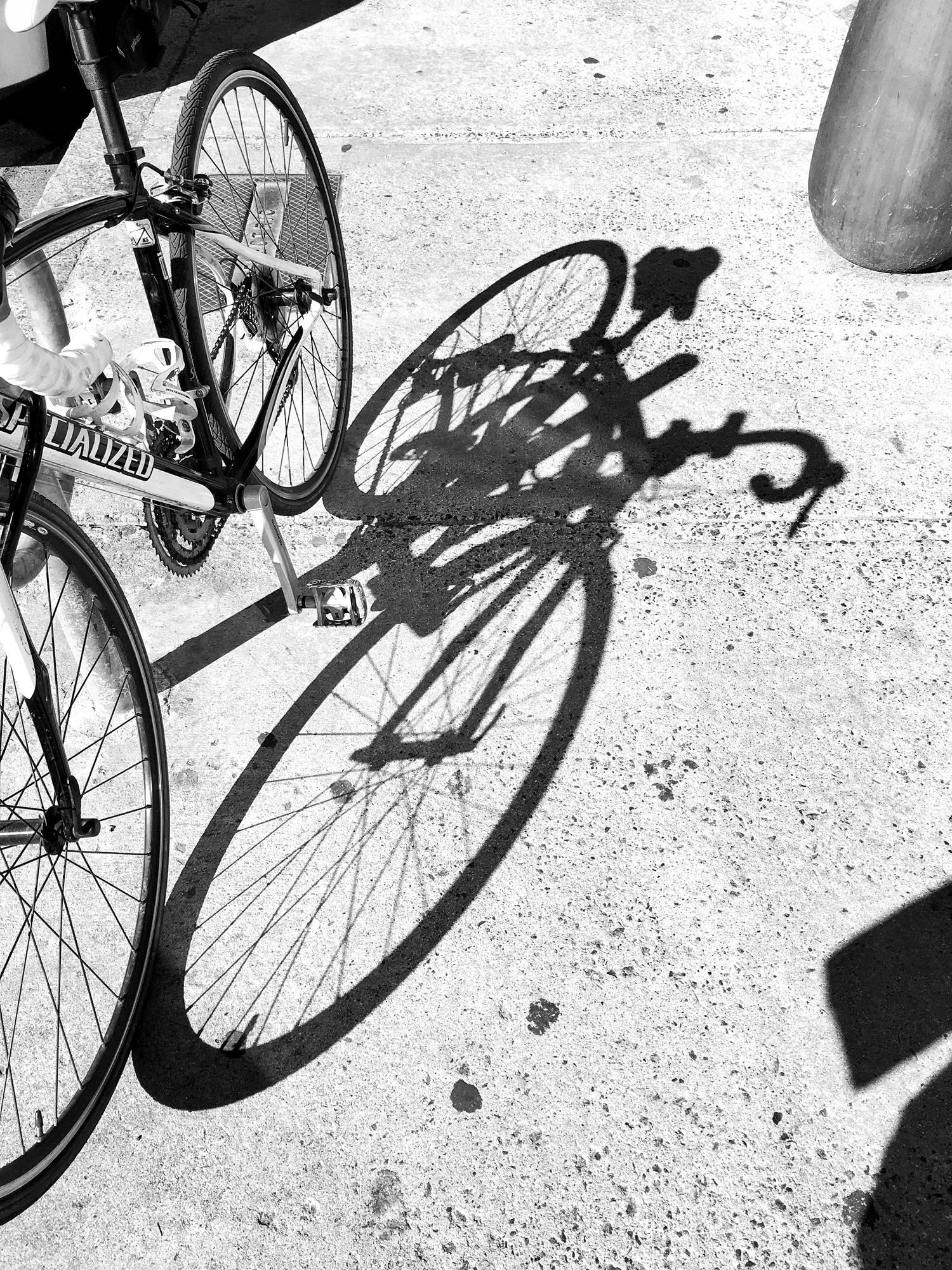 bike shadow / elizabethcraneswartz.com