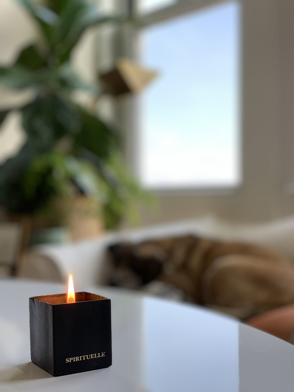 candle from abc home, at home
