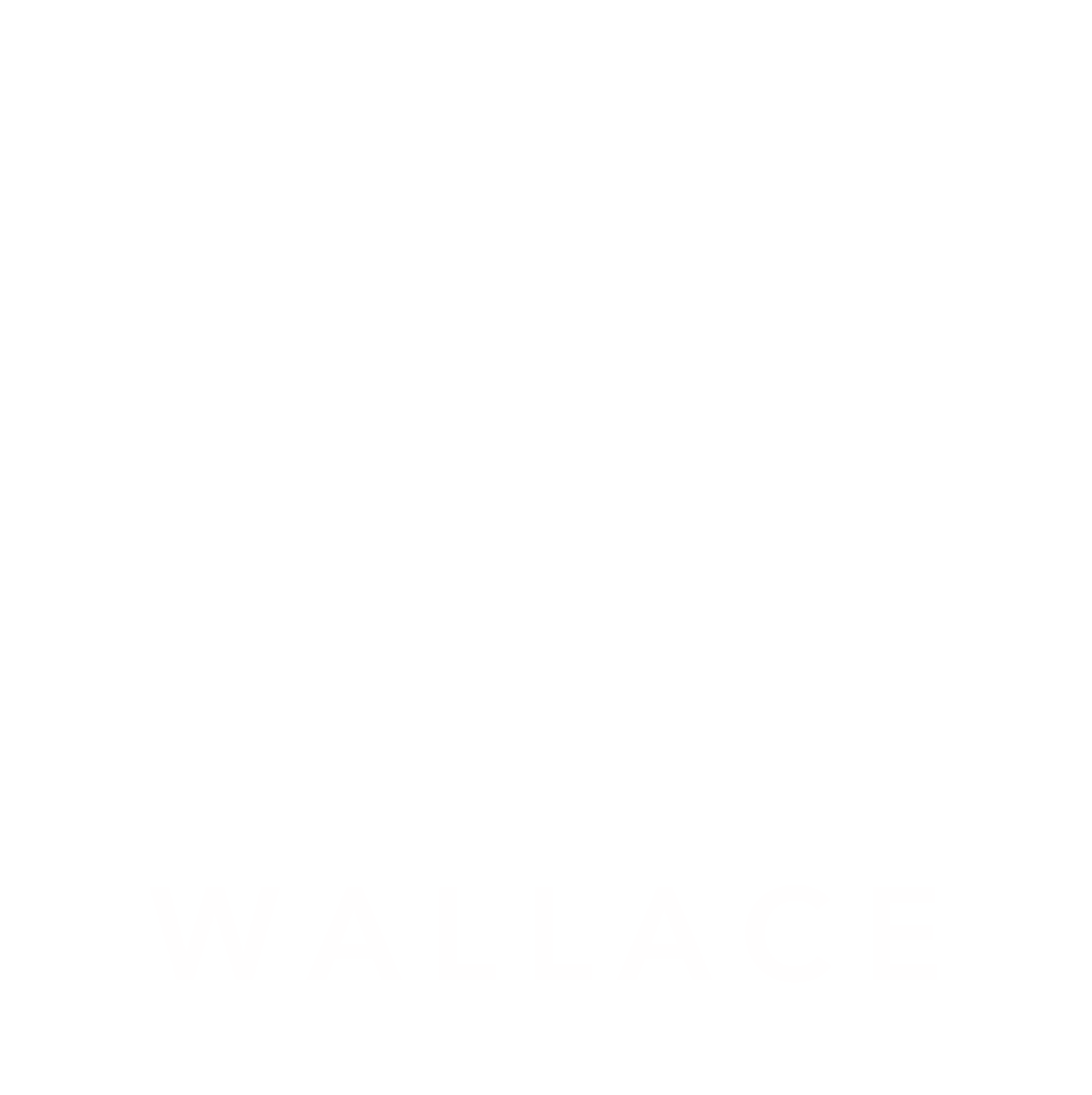 Wallace Homes & Loans