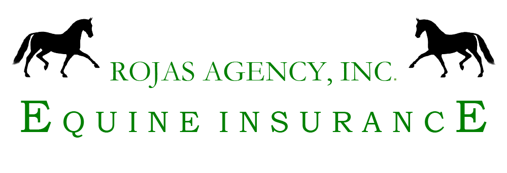 Horse Insurance | Rojas Agency Equine Insurance