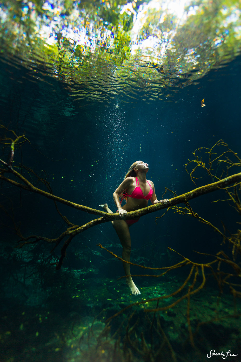 Alison Teal swimming in an untouched cenote.