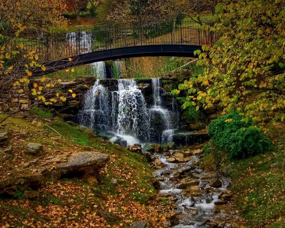 Bridging the Cedar