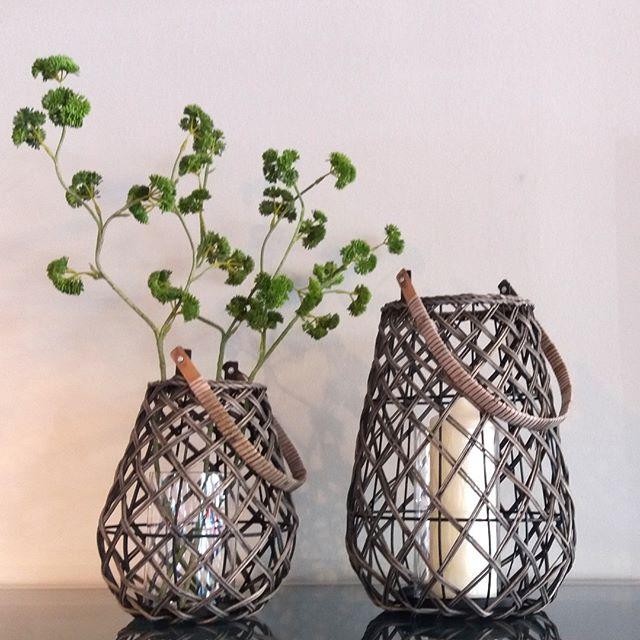 KAHEKU: Lantern Mantua grey  #kaheku #lantern #windlicht #vase #mantua #geflecht #accessoire #design #wohnsalon #showroom #mainz