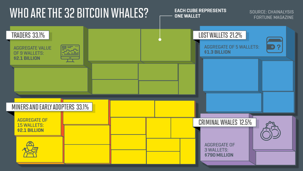 whales11.png