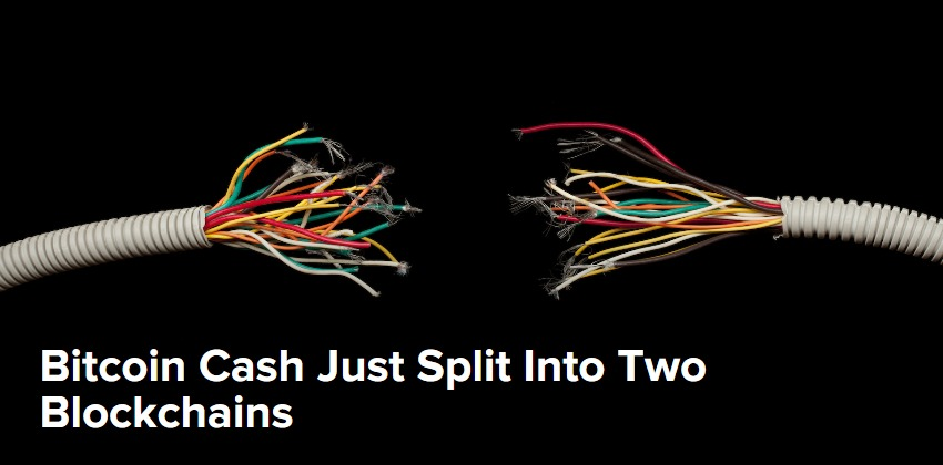 Bitcoin-Cash-Just-Split-Into-Two-Blockchains-CoinDesk.jpg