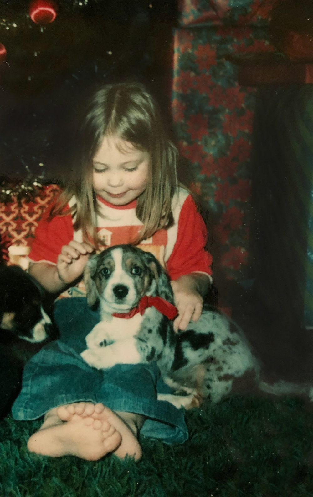 This is me at 3, in front of the christmas tree, with my new dog troubles. wow, my life is already sounding like a dolly parton song. Loved this guy. A lot.