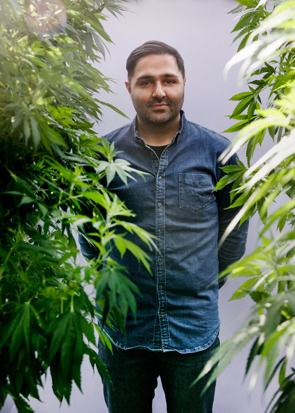 Mandesh brings extensive consumer products experience to Pure Sunfarms, leading the team as President and CEO. His mandate is to establish Pure Sunfarms as the leading choice for consumers when it comes to trusted quality cannabis.  As a seasoned senior level executive, Mandesh has led business operations for a number of well-known retailers, including LCBO, Target Canada, Aritzia and Loblaws. Most recently, Mandesh joined Pure Sunfarms from Liquor Control Board of Ontario (LCBO) as a Senior Vice President, Supply Chain and Wholesale where he led LCBO's supply chain division, and developed and managed its supply chain and wholesale strategy as the the LCBO prepared for the legalization of adult-use cannabis. Mandesh is well versed in proven successes in managing supply chains at scale and developing key business strategies across a diverse set of industries.  Mandesh is committed to leveraging best-in-class operational practices to lead Pure Sunfarms to success, and strives to create a work culture true to his values of humility, empathy and teamwork. He holds a Bachelor of Science in Industrial Engineering from University of Toronto.  In addition to his responsibilities at Pure Sunfarms, Mandesh also serves on the Board of Directors for NLS, Canada's leading logistics provider for fashion, footwear, action wear and general merchandise.