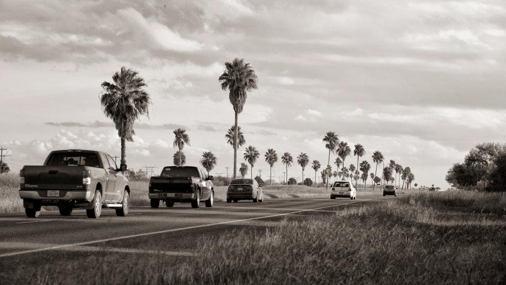 image2.palm tree highway.jpeg