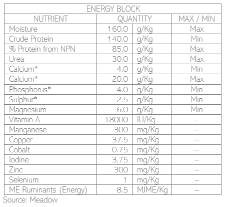 Nutrition_EnergyBlock.PNG