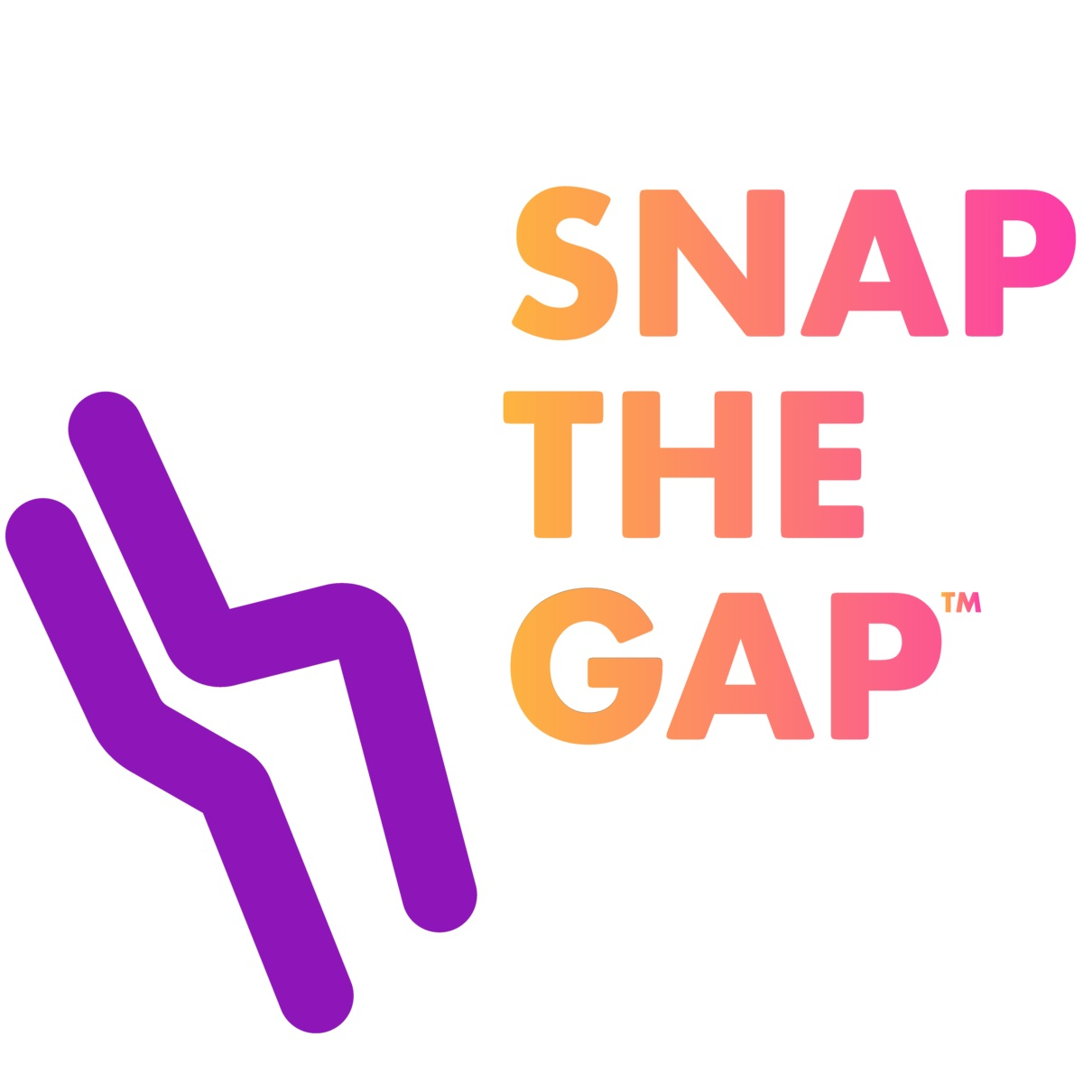 Snap The Gap