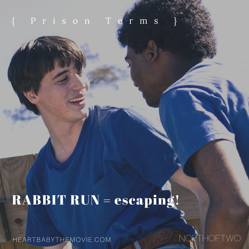 rabbit run.png