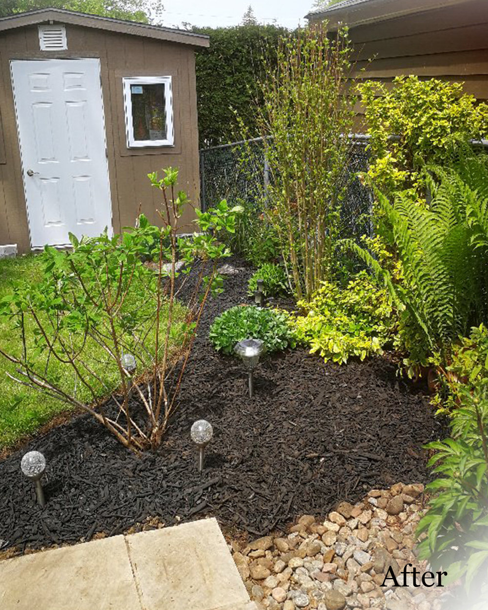 Spring Clean-up - Let us prepare your gardens for the summer by tidying the beds, pruning shrubs (time appropriate) and re-edging.