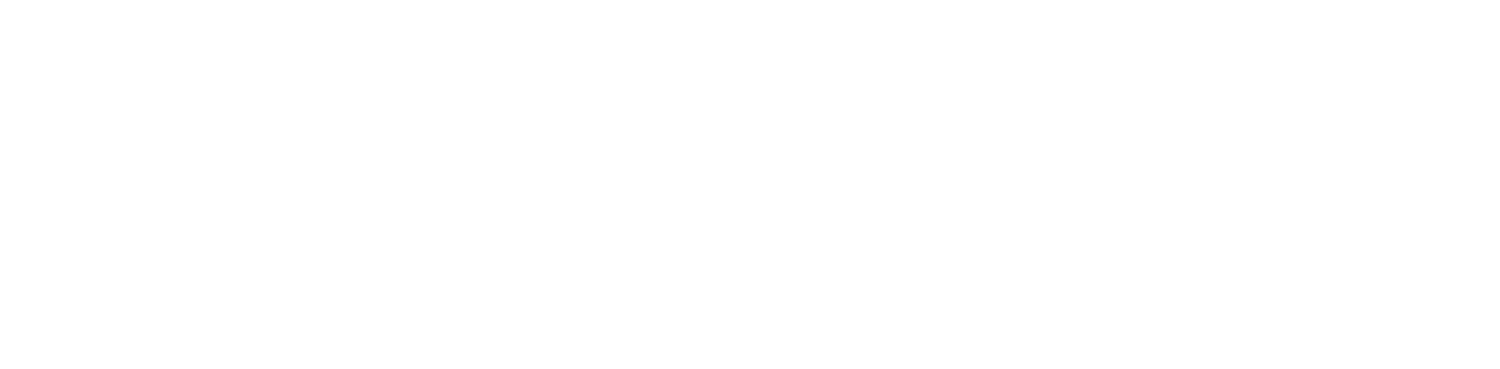 Delivering Happiness Project