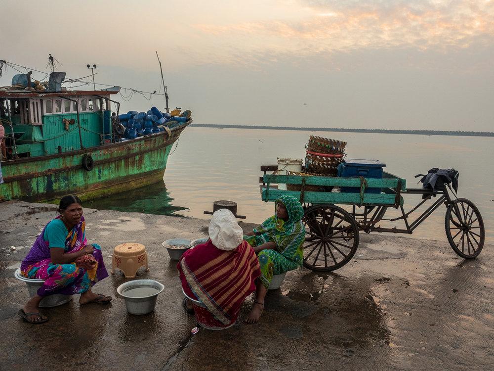 Cleaning and selling fish at Chennai's Kasimedu fishing harbor