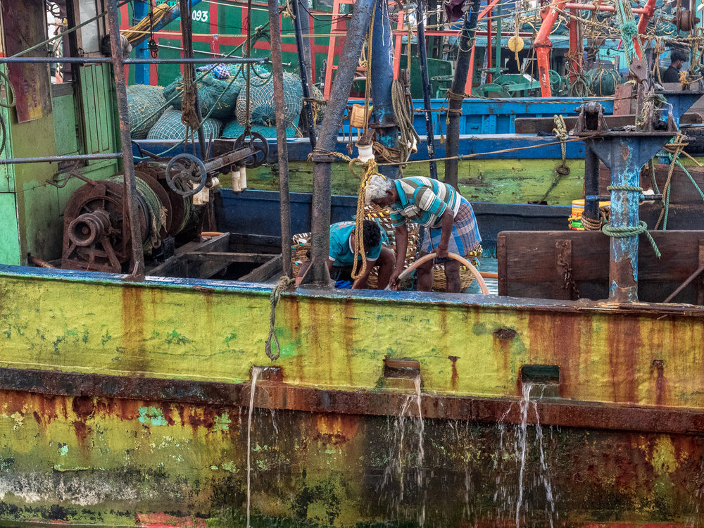 Cleaning the boat after unloading fish at Chennai's Kasimedu fishing harbor