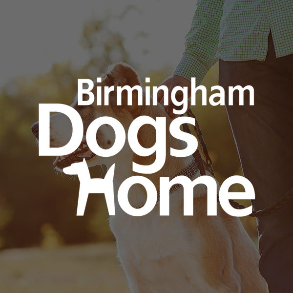 Dogs-Home-Featured-600x600.jpg