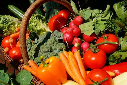 vegetables_community_garden.jpg