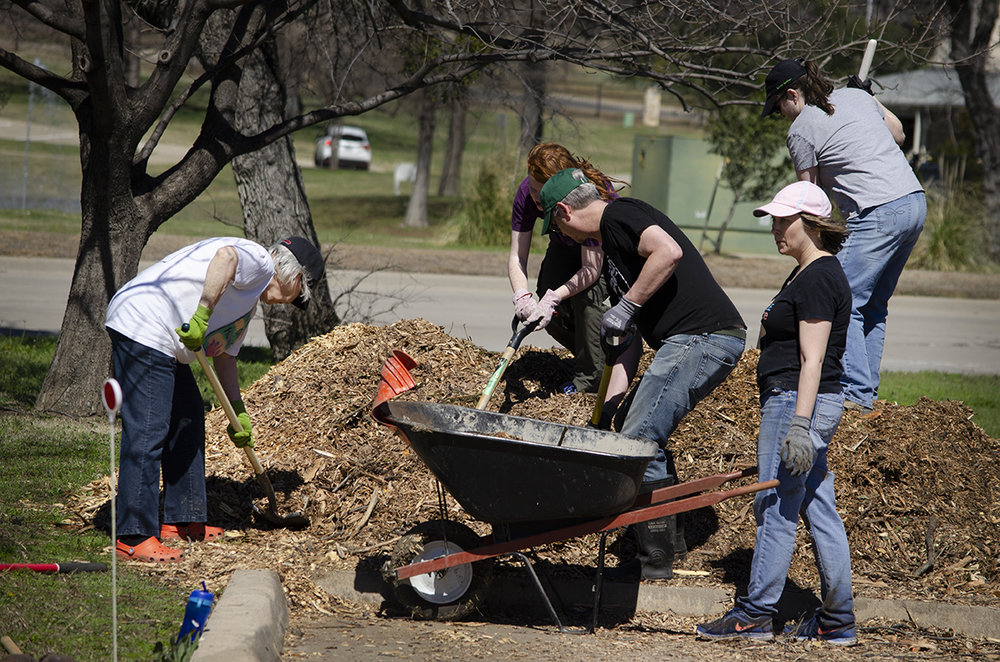 Volunteers move donated mulch to the garden beds.