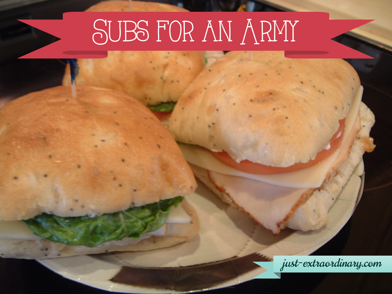 Subs for an Army 02 19 14