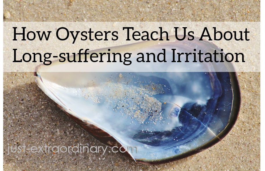 How Oysters Teach Us About Long-suffering and Irritation