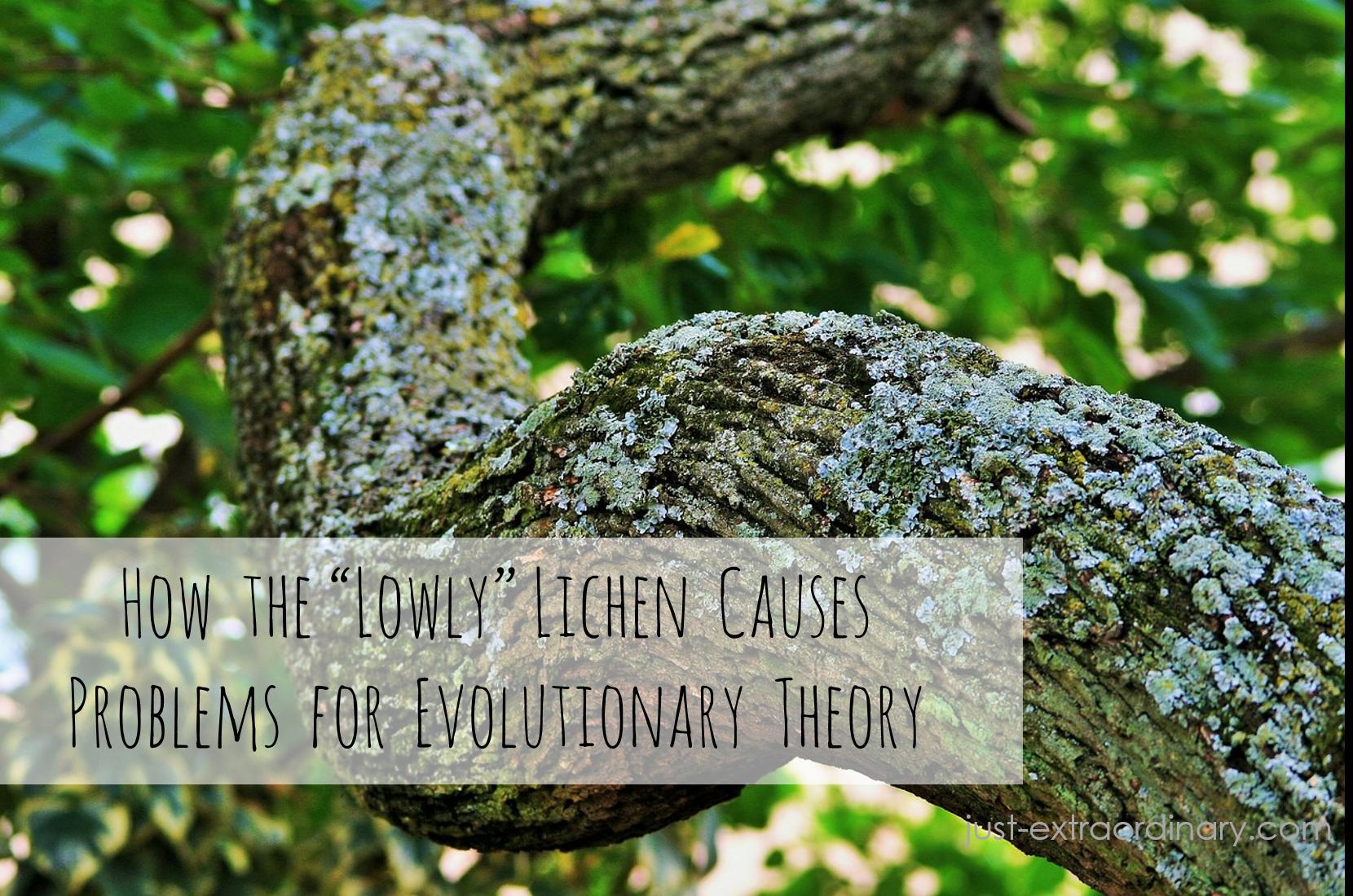Lichens-and-evolution-just-extraordinary.com_