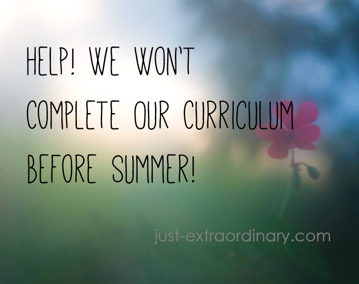 We Won't Complete Our Curriculum by Summer just-extraordinary.com