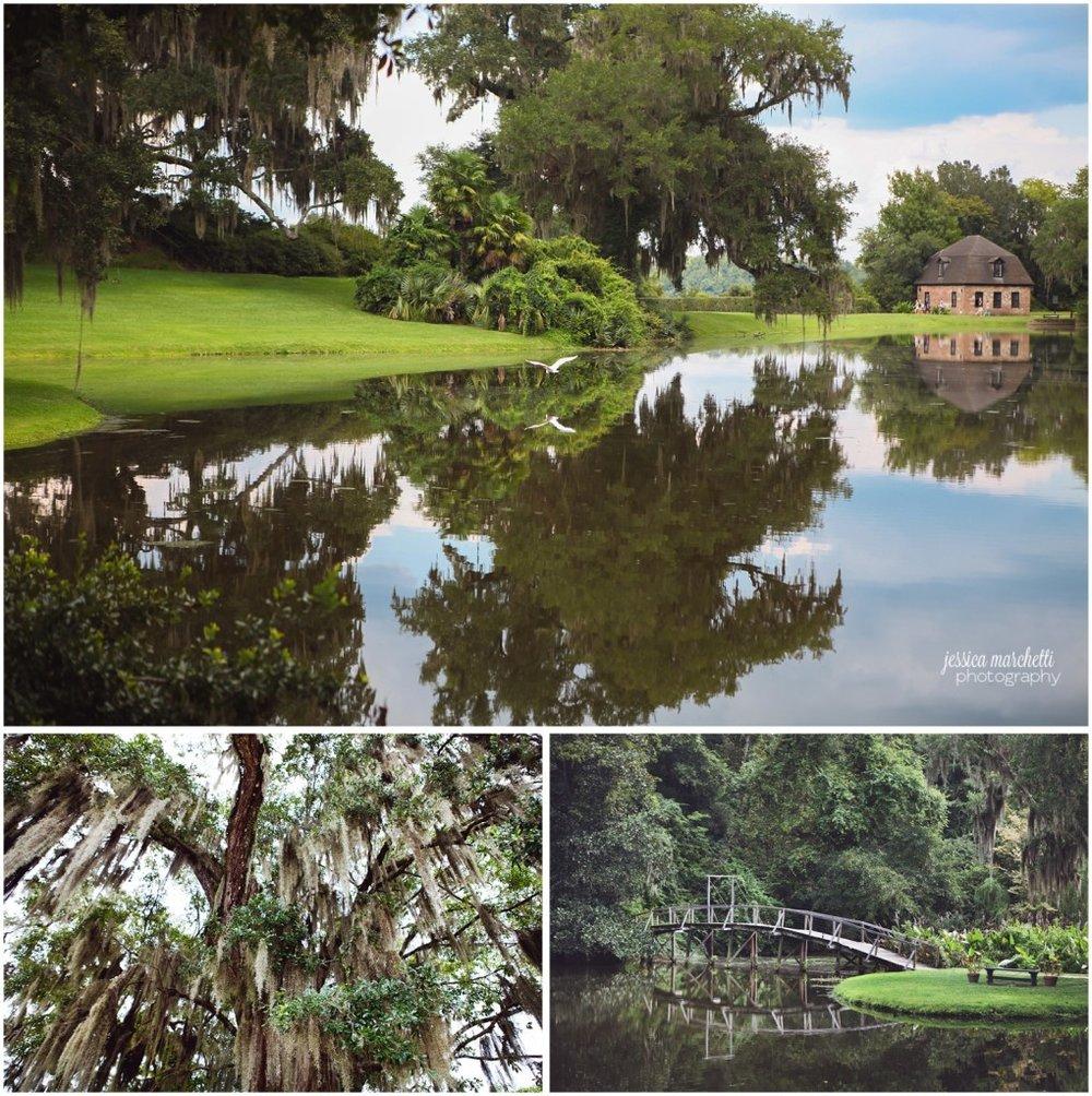 Charleston South Carolina Images_4