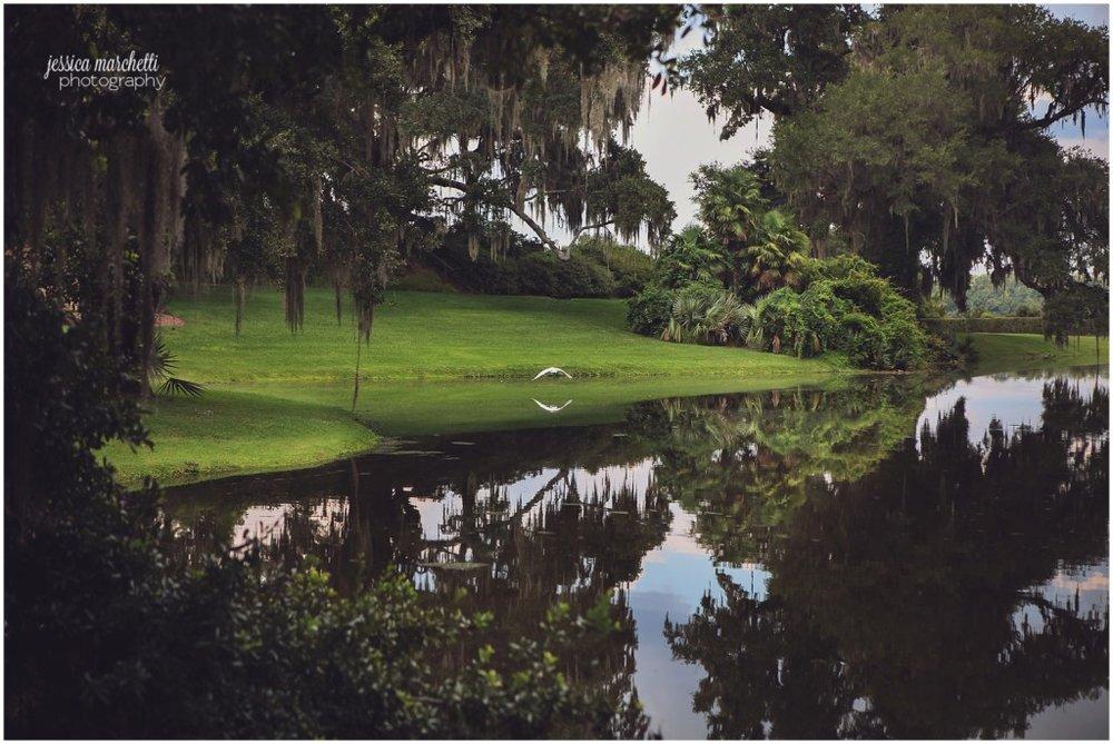 Charleston South Carolina Images_5