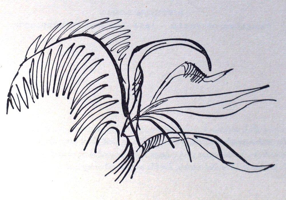 E. Ethelbert Miller - Buddha Weeping in Winter (2001)