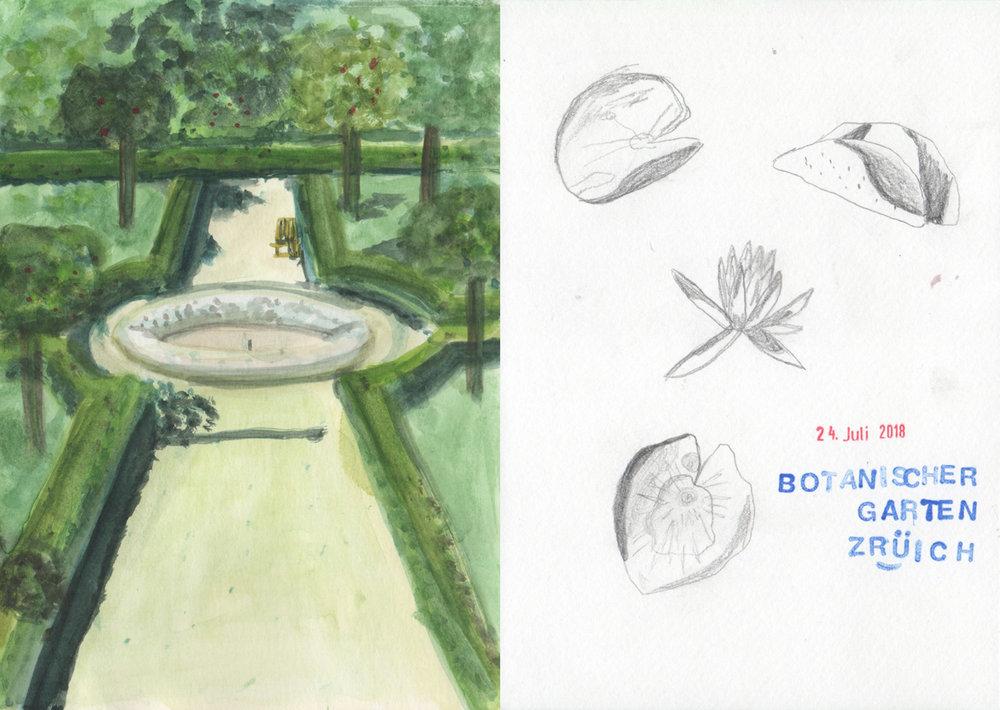 illustration-garten8-deborahlaetsch.jpg