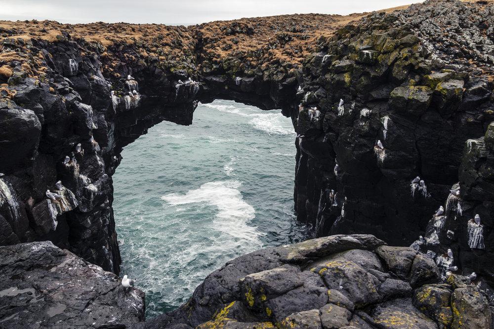 Ankit_Iceland-0125.jpg