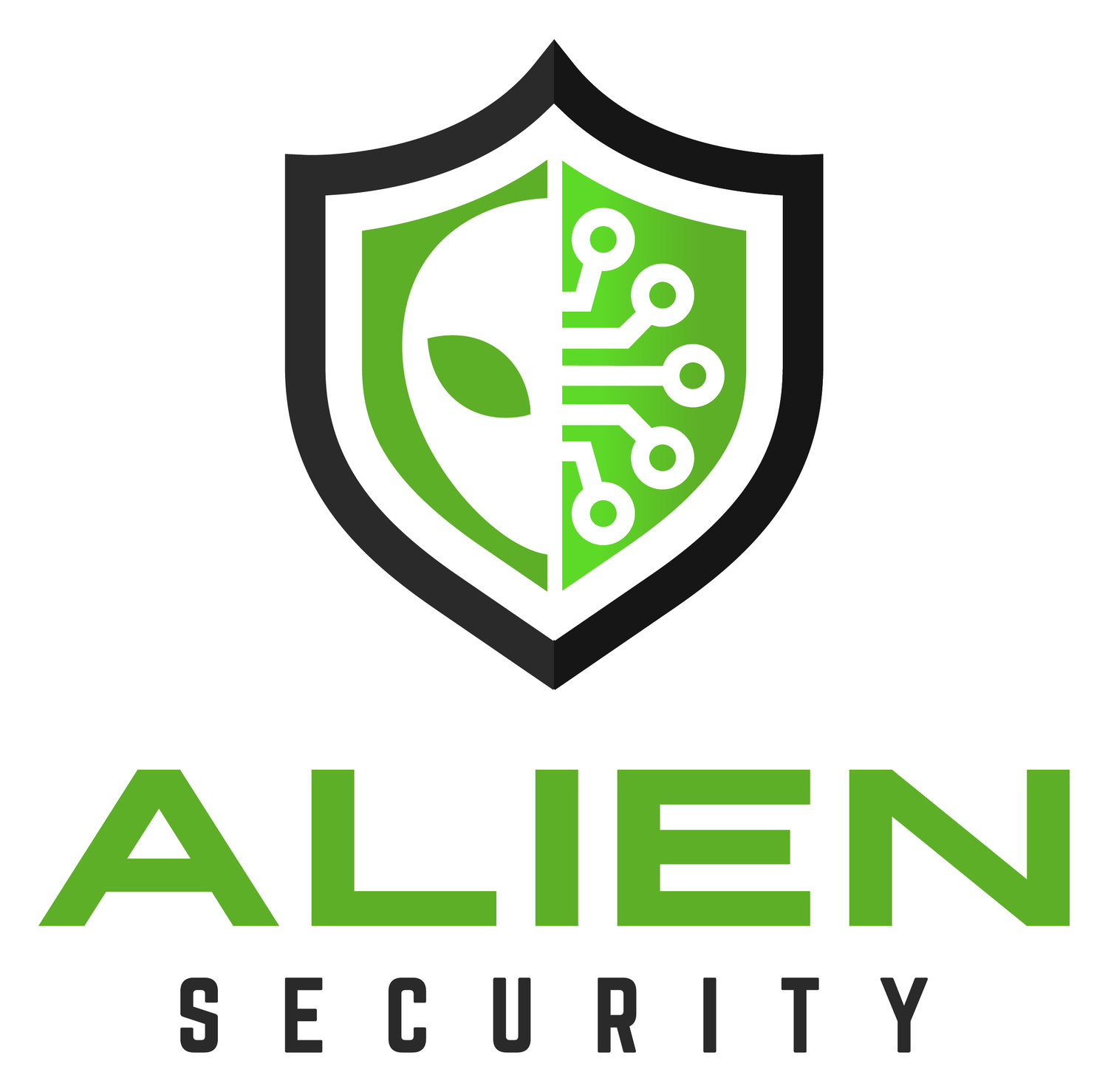 Alien Security Ltd