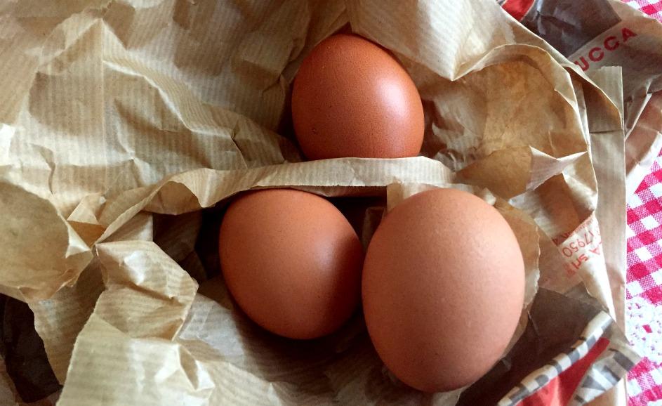 Eggs_sb_luc.jpg