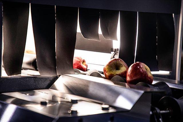Apple Sorting Machine Prototype