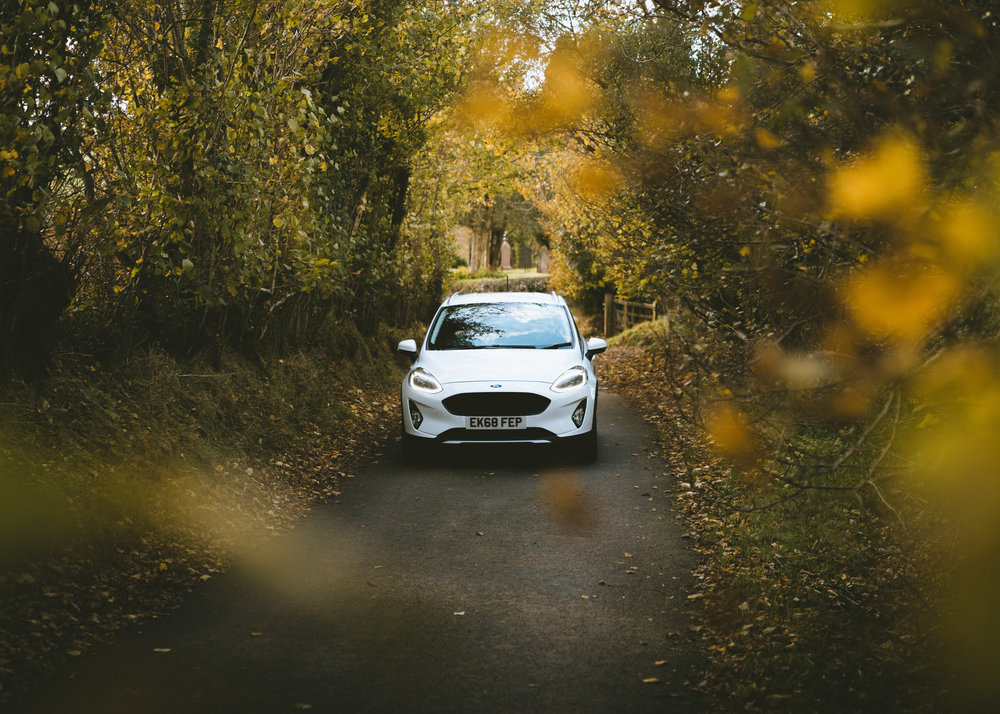 Ford Fiesta Autumn Leaves (1 of 1).jpg